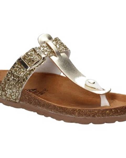 Zlaté topánky Everlast