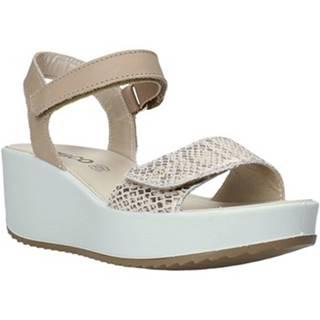 Sandále IgI CO  5178111