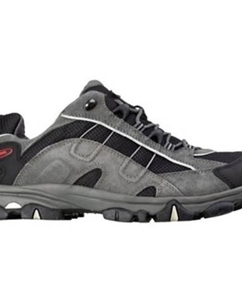 Viacfarebné topánky Meindl