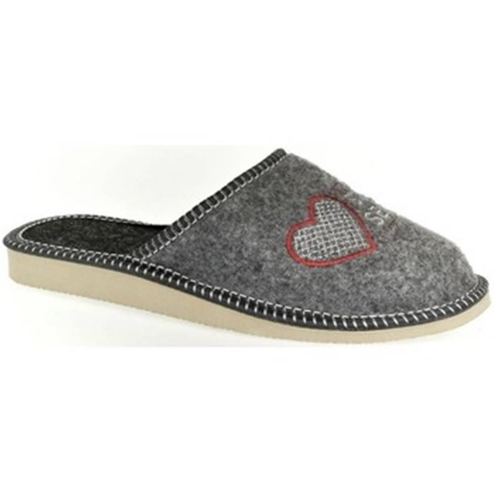 John-C Papuče John-C  Dámske sivé papuče SEGRA