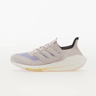 adidas UltraBOOST 21 W Orchid Tint/ Orchid Tint/ Violet Tone