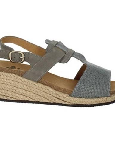 Topánky Scholl
